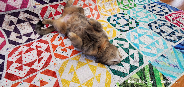 Cats on the Quilts!