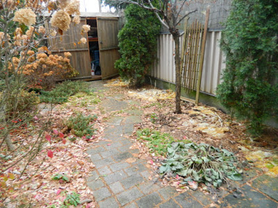 Toronto Oakwood Vaughan Backyard Fall Cleanup Before by Paul Jung Gardening Services--a Toronto Gardening Company