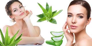 aloe vera jeli cilt bakımı, güzellik, aloe vera maskesi kullananlar, aloe vera maskesi nasıl yapılır, KahveKafe.Net