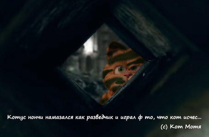 Блог Кота Моти  - Страница 3 Ey8Vyc5XEAEpWPj