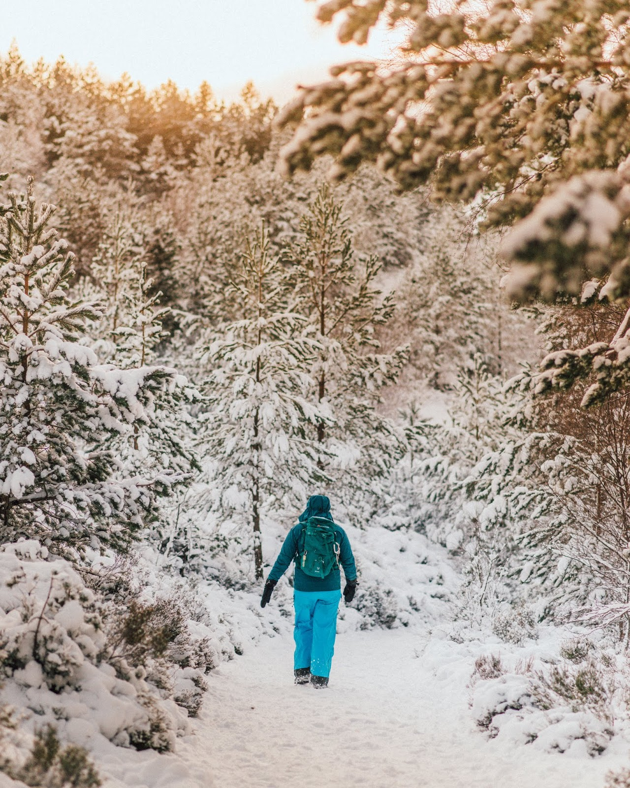 snow brach cairngorms scotland reindeer sky liquid grain liquidgrain