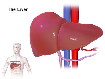 أسباب أمراض الكبد