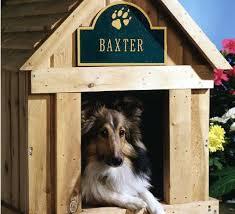 nome de cão