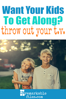 Do your kids fight all the time? Sibling rivalry happens for a lot of reasons, but most parents don't realize that the media your kids are consuming is making it harder for you to stop sibling rivalry in your home! Most kids' TV is normalizing sibling fighting, so learn what to look for and what you can do to foster a close sibling relationship. #parenting #siblingrivalry #kids #family
