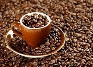 cara mengolah biji kopi luwak,cara mengolah biji kopi menjadi kopi bubu,cara mengolah biji kopi yang enak,cara mengolah biji kopi secara tradisional,cara mengolah biji kopi yang nikmat,