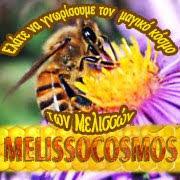 Ηρθε ο καιρος ο melissocosmos να γινει site