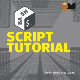 Bash Script Tutorial - TutorialsMate