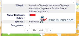Tampilan Informasi Peta Bidang BPN