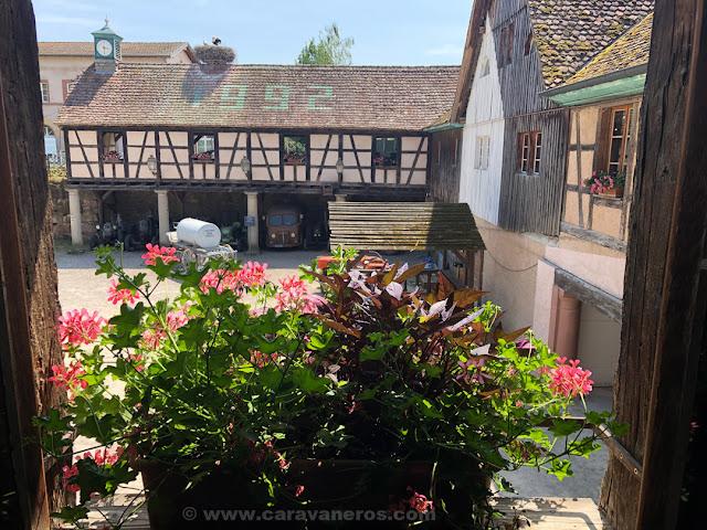 entrada Ecomuseo de Alsacia | Alsacia y selva negra en autocaravana con niños