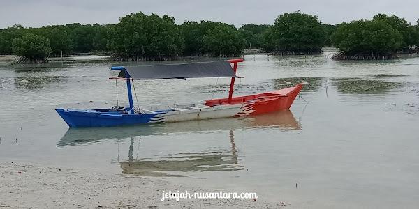 aktivitas wisata pantai pasir perawan