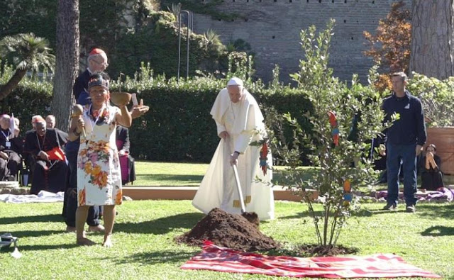 News au 11 novembre 2019 Pope_Francis_and_Indigenous_Leader_at_tree-planting_ceremony_810_500_75_s_c1