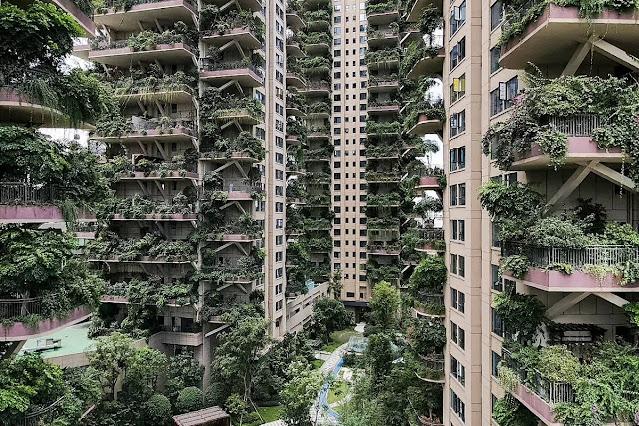 Ilusões da ecologia. Os moradores resistiram muito pouco