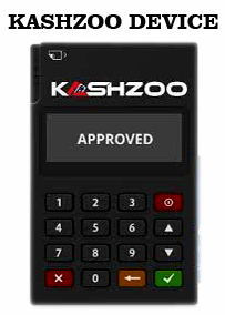 How To Get Kashzoo Pos For Your Business (Very Easy)