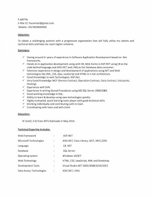 DOT NET Resume 1