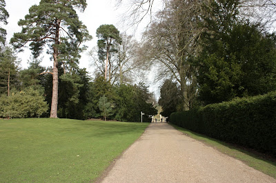 Photo showing wide gravel path with slight descent that approaches the water gardens