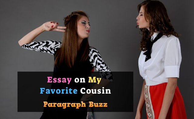 Essay on My Favourite Cousin