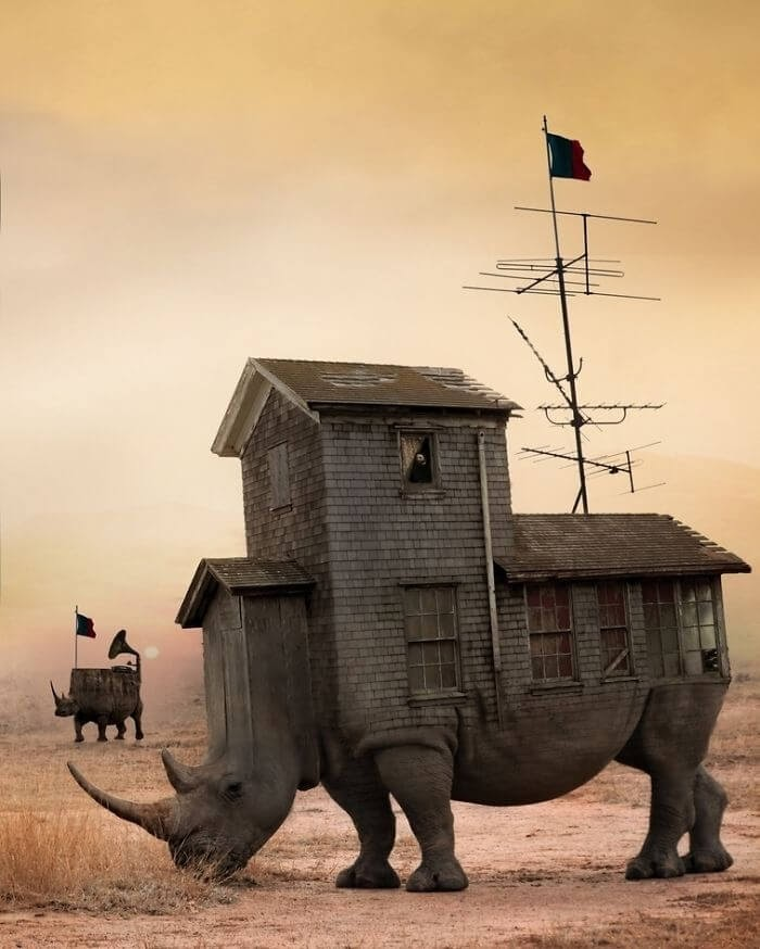 05-Rhino-House-Stalowa-Wola-Surreal-Photos-of-Landscapes-and-Architecture-with-Animals-www-designstack-co