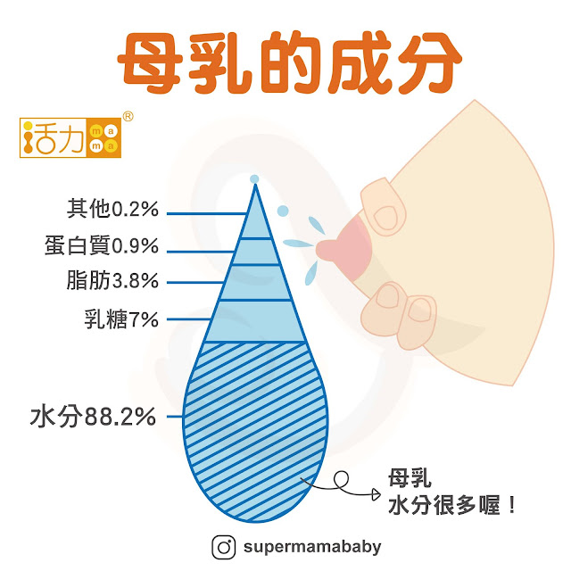 因此全母奶寶寶不需要在額外補充水分