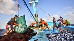 Miễn giảm thuế hỗ trợ ngư dân vươn khơi bám biển