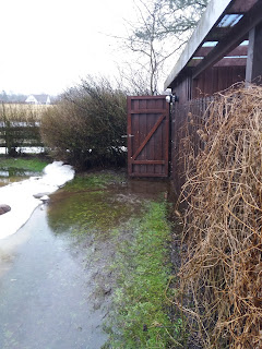 Path to shed under water