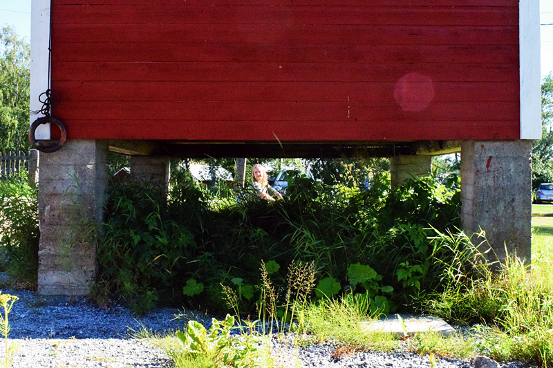 Vaellusreitit Lapissa – seitsemän matkaa erämaan rauhaan