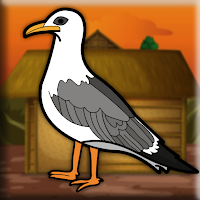 Play Games2Jolly Seagull Escape From Cage