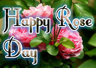 Happy Rose Day images, Pictures, Photos