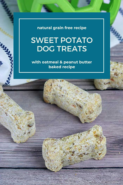 How to make a home made dog treat recipe with sweet potato. This healthy all natural is made with coconut flour so it's grain free and gluten free. It has peanut butter oatmeal and you can use pumpkin or baby food squash instead of sweet potato. Make an easy simple baked homemade dog treat recipe. #dogtreat #sweetpotato