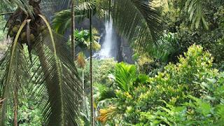 tropical vanilla sunscreen - le reve spa