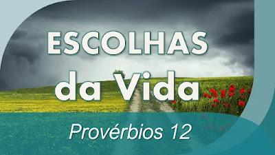 estudo bíblico provérbios 12 pregação escolhas da vida