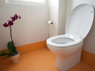 wc duduk di toilet