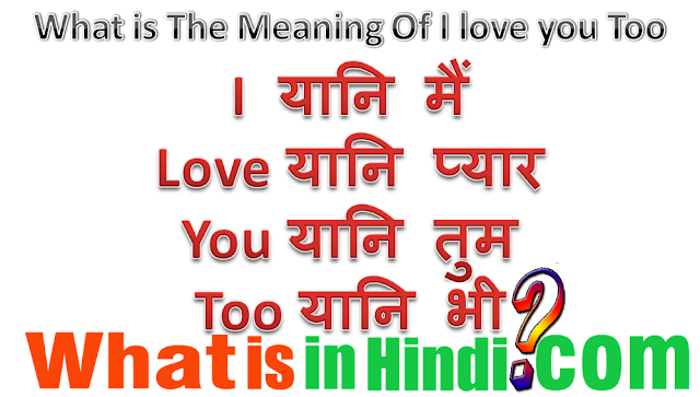i love you 2 meaning in hindi