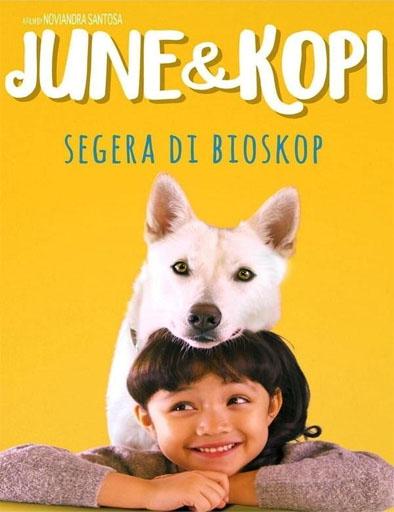June y Kopi