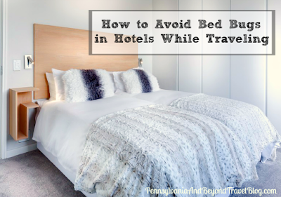 How to Avoid Bed Bugs in Hotels While Traveling