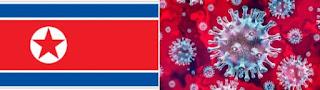 North Korea detects first suspected case of coronavirus