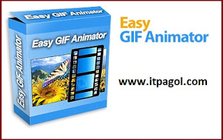 Easy GIF Animator 6.1 ProWith Serial Keys | Full Version