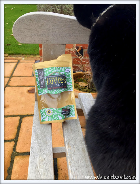 Parsley's Outdoor Snack ©BionicBasil® The Pet Parade 384