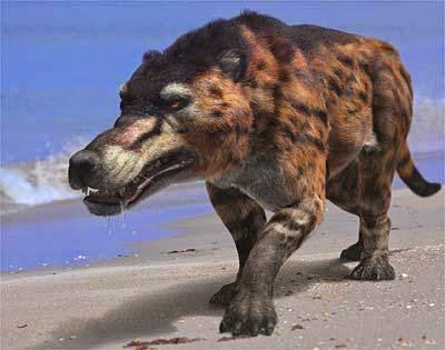 Beast of Gevauden