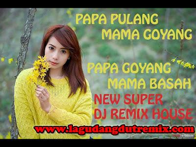 Lagu DJ Remix Papa Pulang Mama Goyang