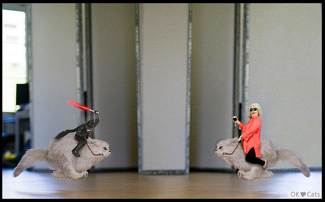 Photoshopped Cat picture • Darth Vader vs. Paula Deen riding fluffy cats [cat-gifs.com]