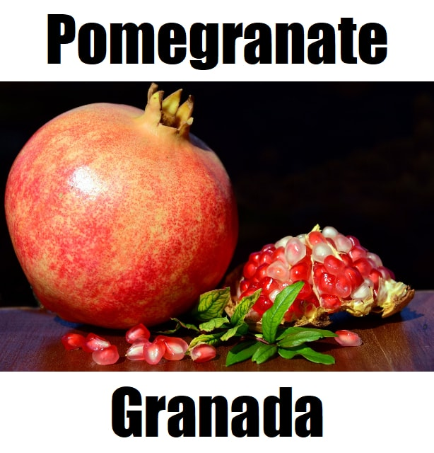 Pomegranate in Tagalog