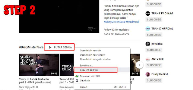 Cara Download Video Youtube Full Playlist