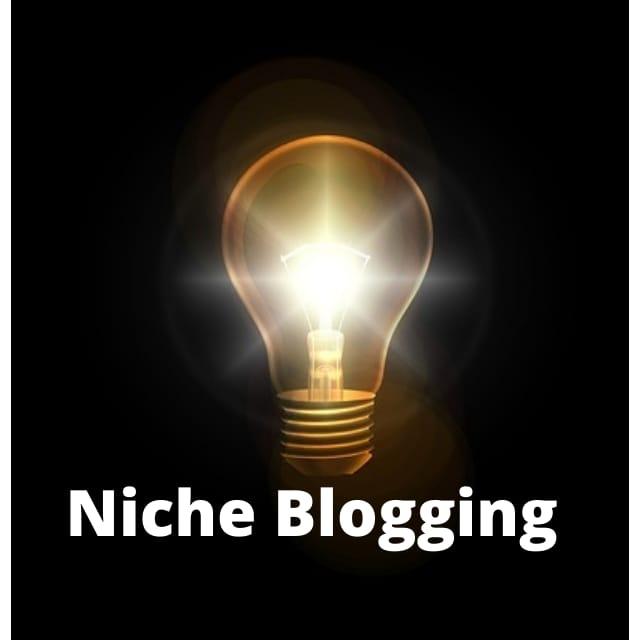 Cara Memilih Niche Pada Blog