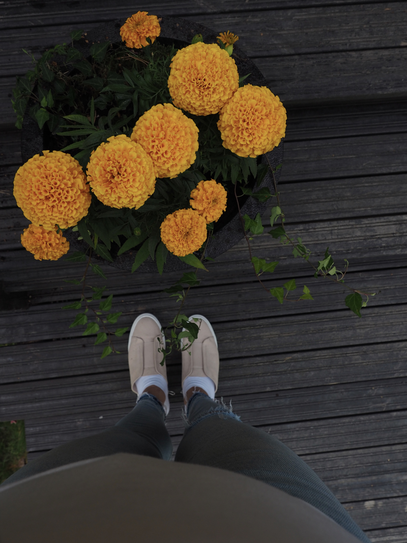 Kesäinen kukka-asetelma