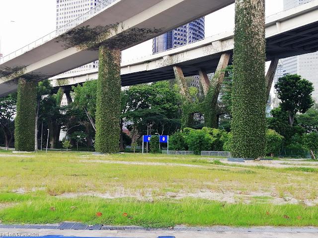 dây leo kỳ diệu phủ xanh kết cấu cột bê tông ở singapore- ảnh 2