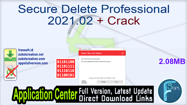 Secure Delete Professional 2021.02 + Crack