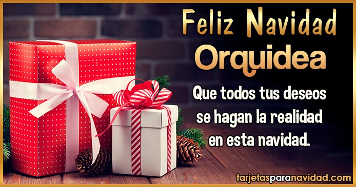 Feliz Navidad Orquidea