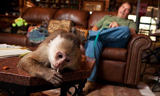 Monkey Bites at Oklahoma Foster Home