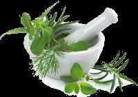 Kelebihan Obat Herbal Kencing Nanah Dibandingkan Obat Kimia