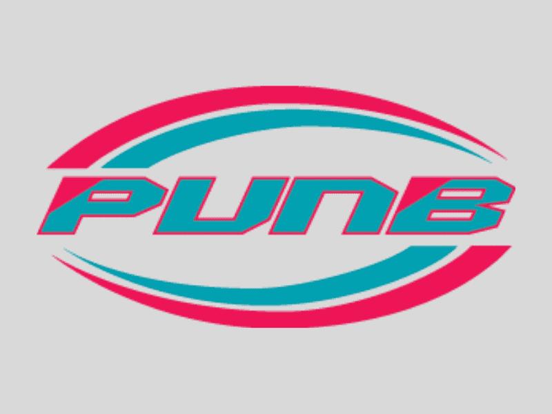 bantuan pinjaman bisnes PUNB